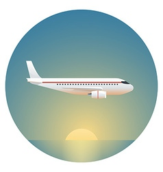 Airliner detailed vector