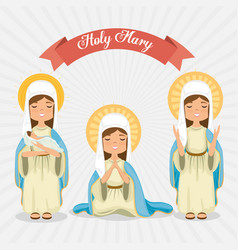 Holy miracle virgin religious card vector