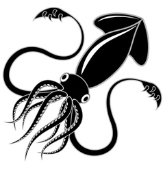 Black squid vector