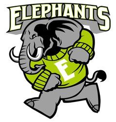 Elephant school mascot vector