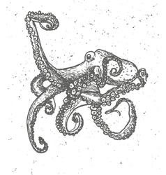 Vintage graphic with octopus print vector