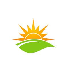 Green leaf sun shine organic logo vector