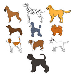 Set of cartoon dog breeds vector