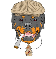 Hipster dog rottweiler breed vector