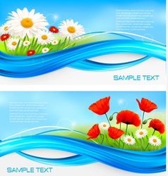 Flower banners with red poppies and daisies vector