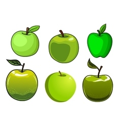 Fresh green apples fruits set vector image