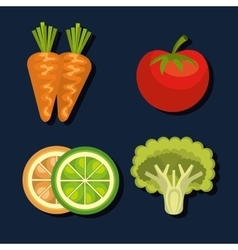 healthy food design vector image vector image