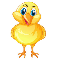 Little chick with happy face vector