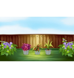 Pot of plants inside the high fence vector