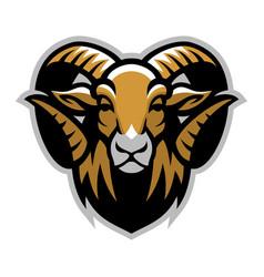 head of ram mascot vector image