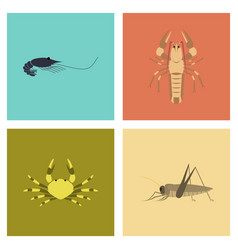 Assembly flat shrimp lobster crab grasshopper vector