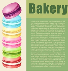 Infographic with text and macaron vector image