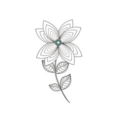 lily flower decoration line vector image