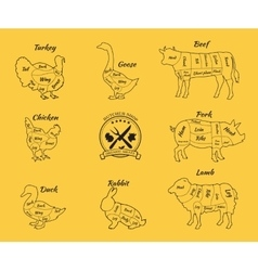 Set schematic vew of animals for butcher shop vector