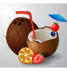 Exotic coconut cocktail vector
