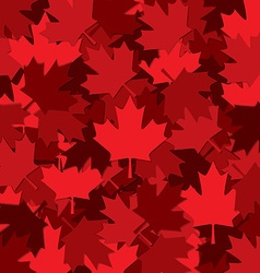 Canadian Maple leaf scatter pattern in format vector image