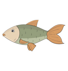 fish colored hand drawn sketch vector image
