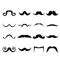 Mustache Icons Set vector image