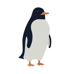 penguins isolated aquatic flightless bird vector image vector image