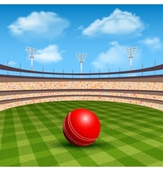 Stadium of cricket vector
