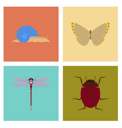 Assembly flat bug snail butterfly dragonfly vector
