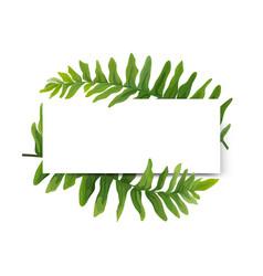 Floral modern card design green forest fern frame vector