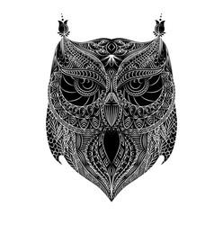 owl white brush vector image