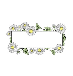 Daisy flower border vector