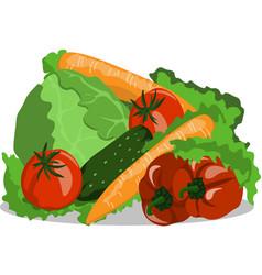 Image vegetables still life cucumber tomato vector