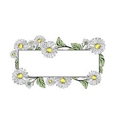 Daisy flower border vector