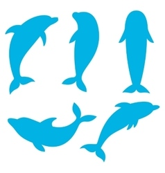 Dolphin silhouettes on the white background vector image vector image