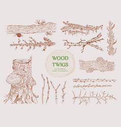 Hand drawn wood branches set vector