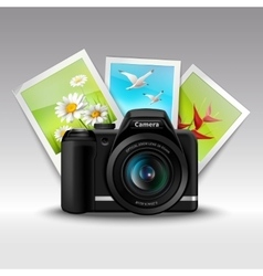 Camera and pictures vector