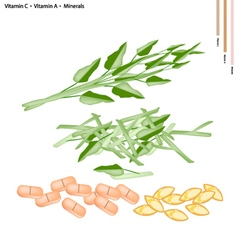 Water spinach with vitamin c and a vector
