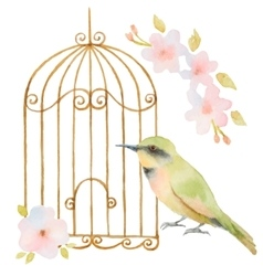 Watercolor bird cage and flowers vector
