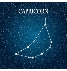 Astrological sign of the zodiac eps 10 vector