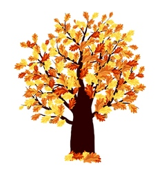 Autumn Oak Tree vector image