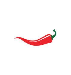 red hot natural chili vector image vector image