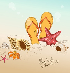With seashells starfish and flip flops vector