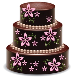 chocolate cake vector image