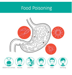 Germs in stomach cause to stomachache and food vector