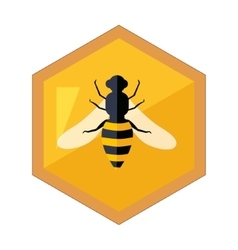 Hexagon shape honeycomb with bee insect in center vector