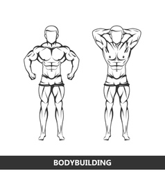 muscled man body vector image vector image