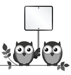 Owls blank sign vector