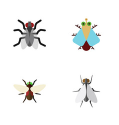 Flat icon buzz set of gnat hum tiny and other vector