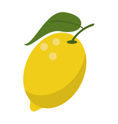 Lemon citrus fruit icon vector