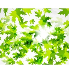 Green leaves pattern spring design template vector image vector image
