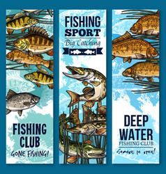 Fishing sport club banner set with swimming fish vector