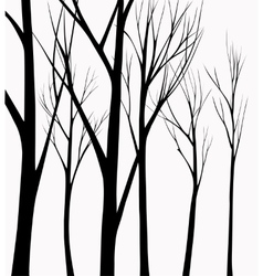 Group of silhouettes trees vector