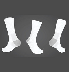socks front and back view vector image vector image